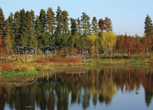 泰兴龙河湾公园